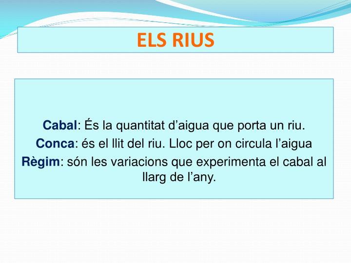 ELS RIUS