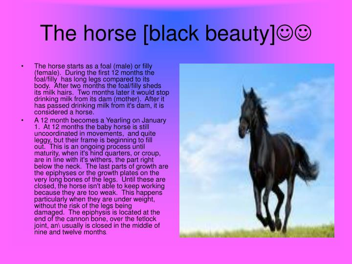 The horse starts as a foal (male) or filly (female). During the first 12 months the foal/filly has long legs compared to its body. After two months the foal/filly sheds its milk hairs. Two months later it would stop drinking milk from its dam (mother). After it has passed drinking milk from it's dam, it is considered a horse.