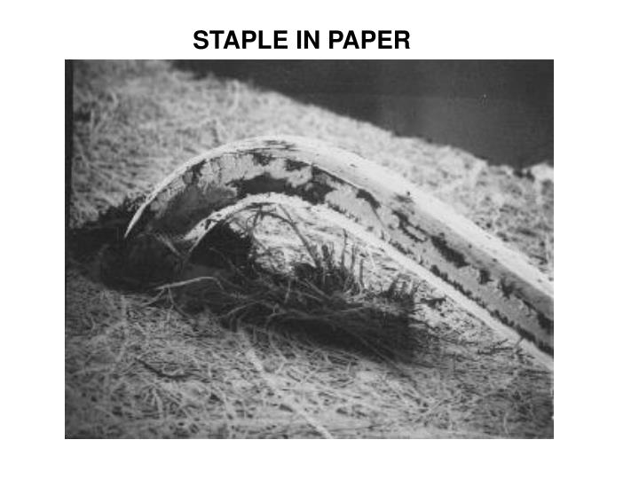 STAPLE IN PAPER