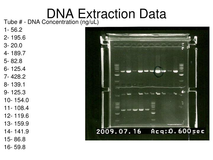 DNA Extraction Data