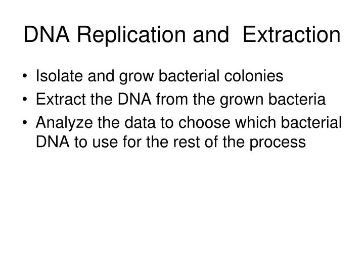 DNA Replication and  Extraction
