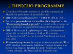 1 dipecho programme