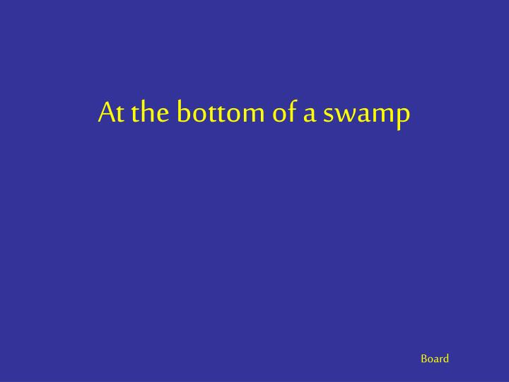 At the bottom of a swamp