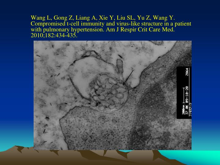 Wang L, Gong Z, Liang A, Xie Y, Liu SL, Yu Z, Wang Y. Compromised t-cell immunity and virus-like structure in a patient with pulmonary hypertension. Am J Respir Crit Care Med. 2010;182:434-435.