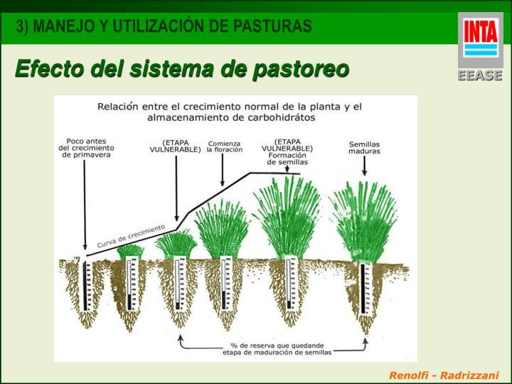 Efecto del sistema de pastoreo