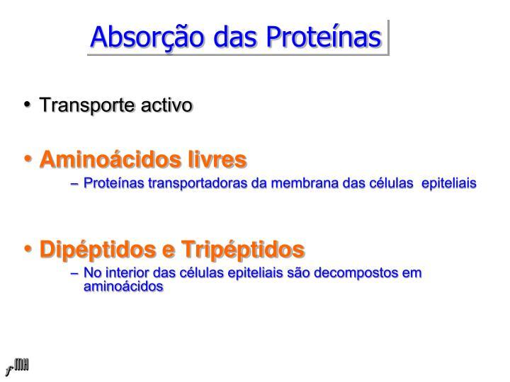 Absorção das Proteínas
