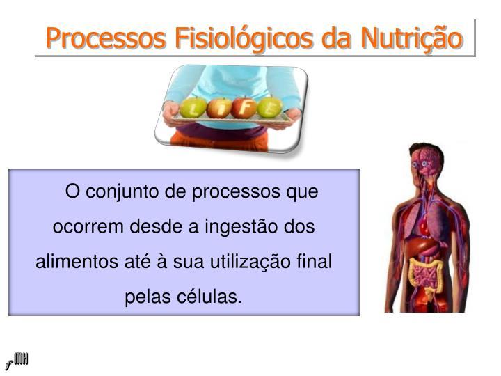 Processos fisiol gicos da nutri o