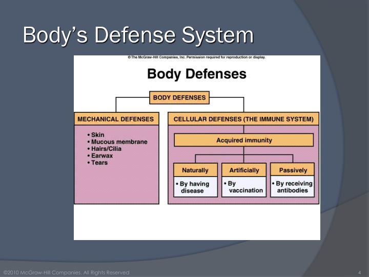 Body's Defense System