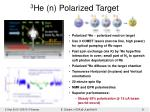 3 he n polarized target