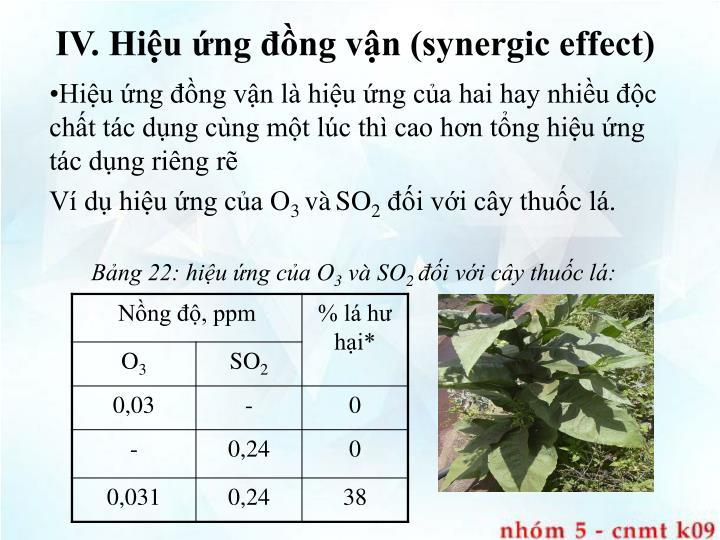 IV. Hiệu ứng đồng vận (synergic effect)