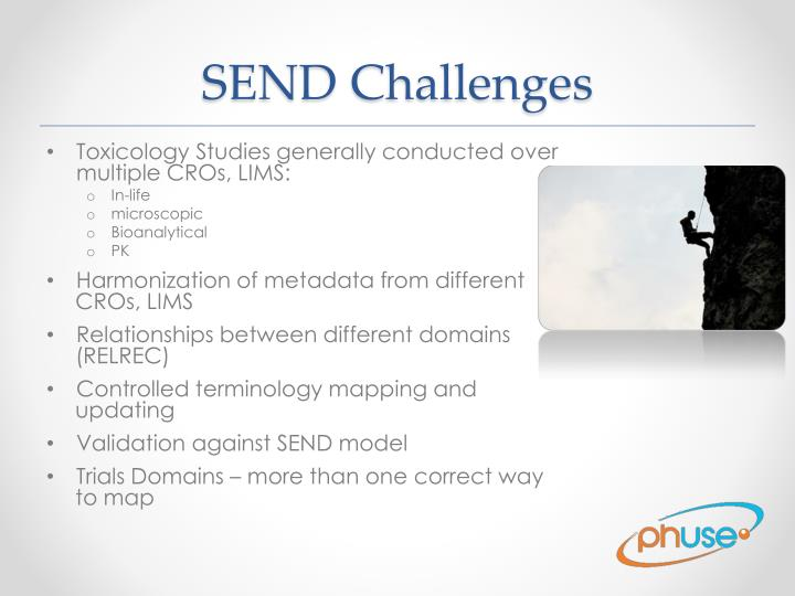 SEND Challenges