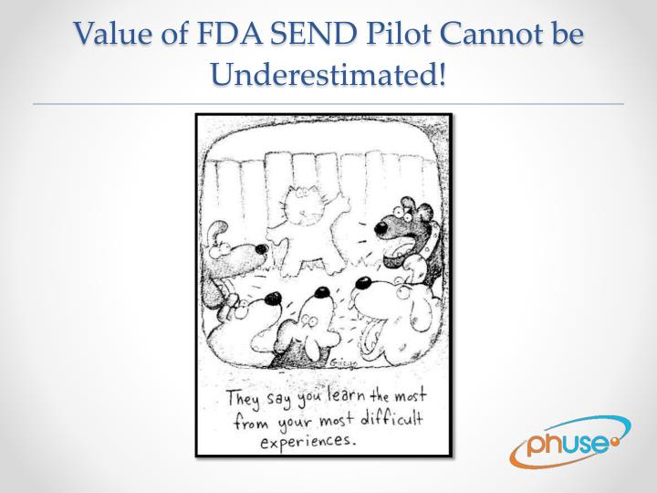 Value of FDA SEND Pilot Cannot be Underestimated!