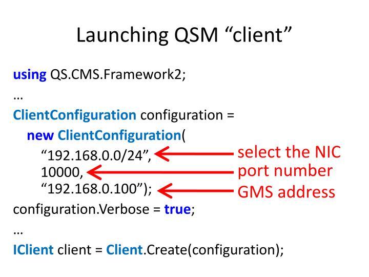 """Launching QSM """"client"""""""