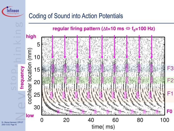Coding of Sound into Action Potentials
