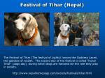 festival of tihar nepal