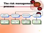 the risk management process1