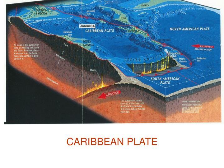 CARIBBEAN PLATE