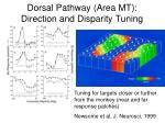 dorsal pathway area mt direction and disparity tuning