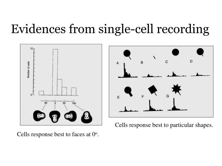 Evidences from single-cell recording