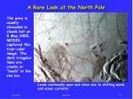 a rare look at the north pole