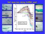 net mass loss during sheba year