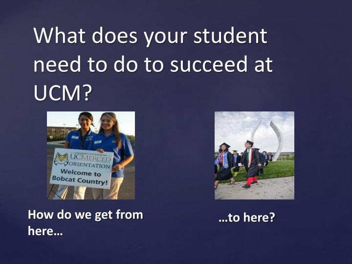 What does your student need to do to succeed at UCM?