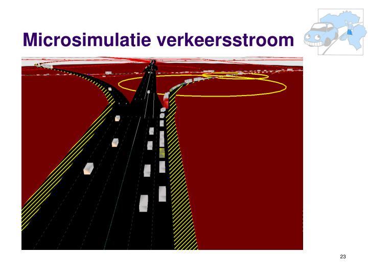Microsimulatie verkeersstroom