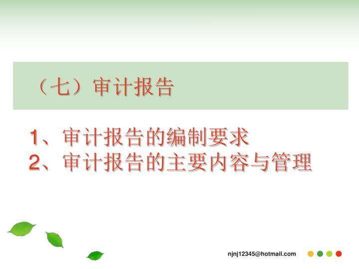 (七)审计报告