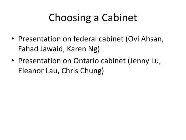 Choosing a cabinet1