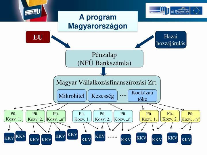 A program Magyarországon