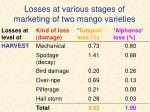 losses at various stages of marketing of two mango varieties