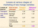 losses at various stages of marketing of two mango varieties1
