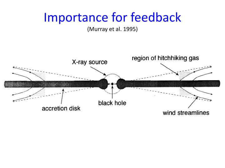 Importance for feedback