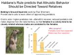 haldane s rule predicts that altruistic behavior should be directed toward relatives