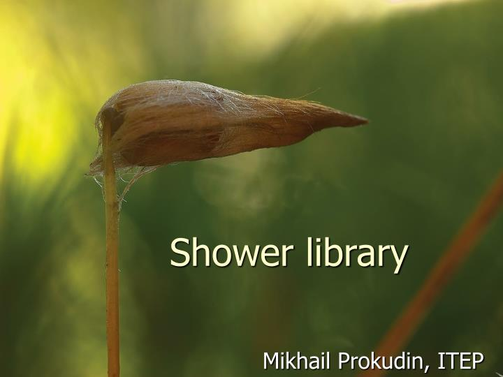 shower library n.