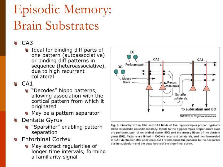Episodic Memory: