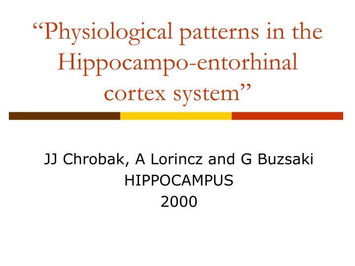 """""""Physiological patterns in the Hippocampo-entorhinal cortex system"""""""