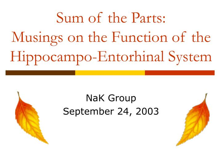 Sum of the parts musings on the function of the hippocampo entorhinal system