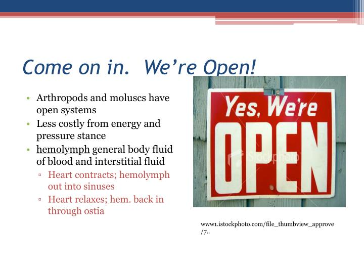 Come on in.  We're Open!