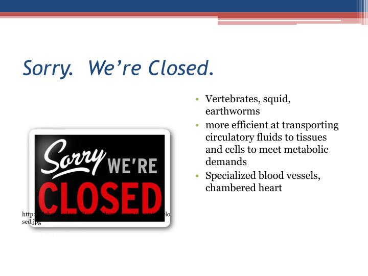 Sorry.  We're Closed.