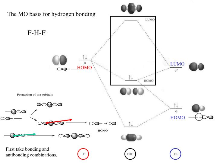 The MO basis for hydrogen bonding
