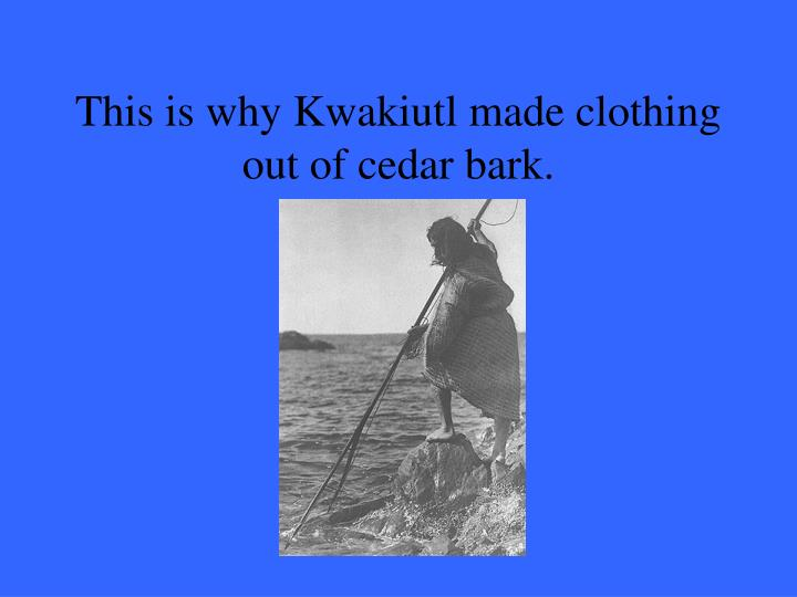 This is why Kwakiutl made clothing out of cedar bark.