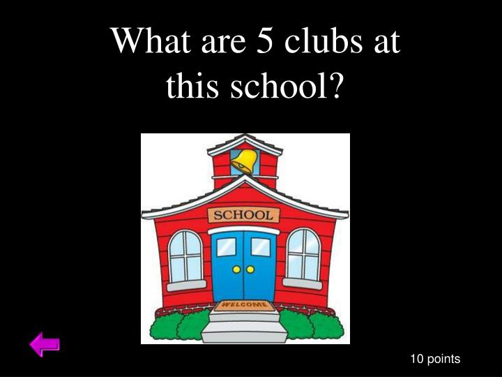 What are 5 clubs at this school?