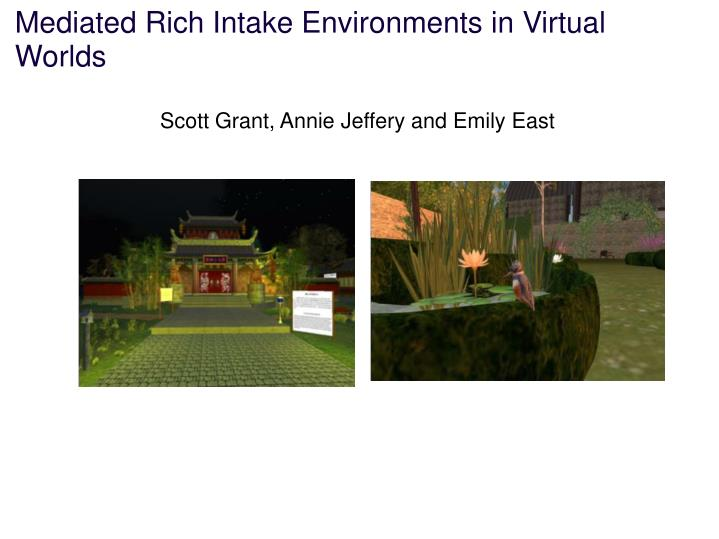 Mediated rich intake environments in virtual worlds