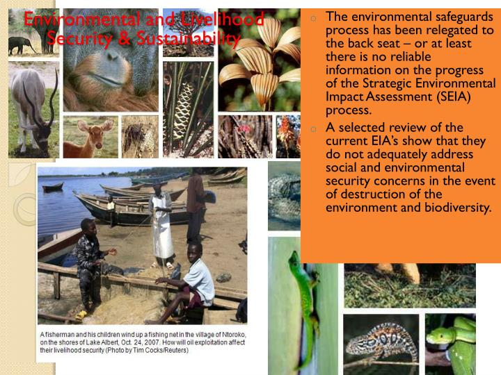 Environmental and Livelihood Security & Sustainability
