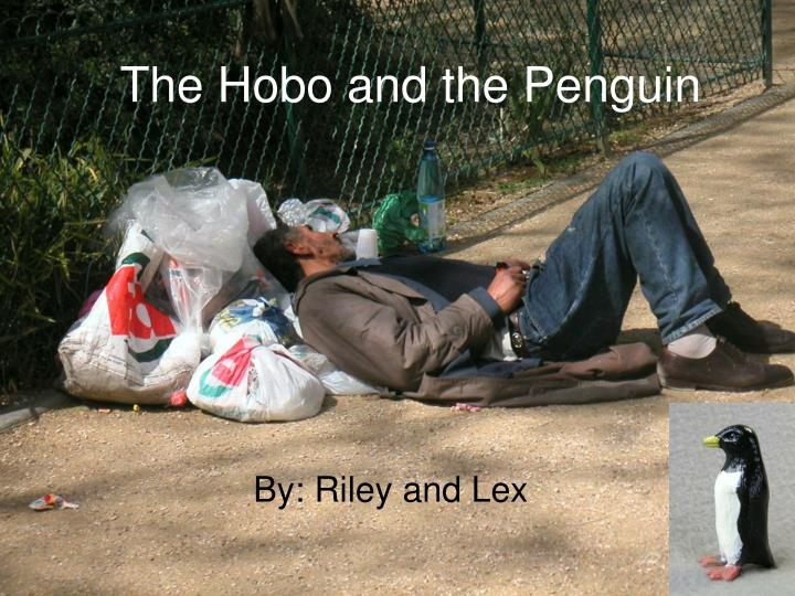 the hobo and the penguin n.