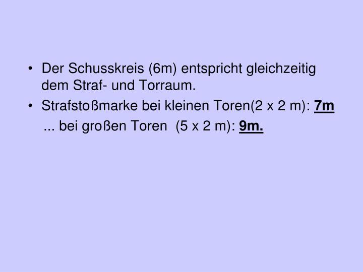 Der Schusskreis (6m) entspricht gleichzeitig dem Straf- und Torraum.