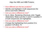 align the hbs and hbb proteins1