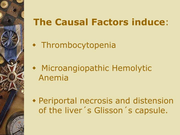 The Causal Factors induce