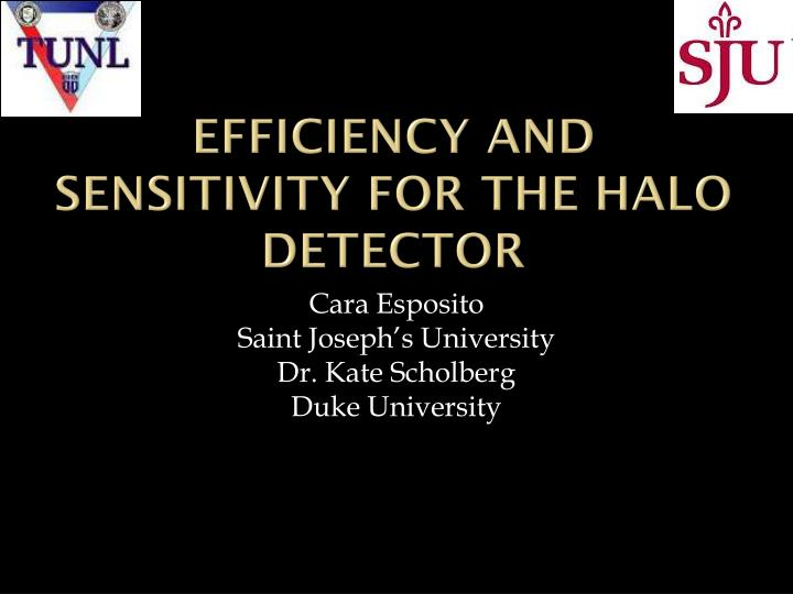 efficiency and sensitivity for the halo detector n.